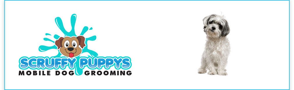 Scruffy Puppys - Mobile Dog Grooming